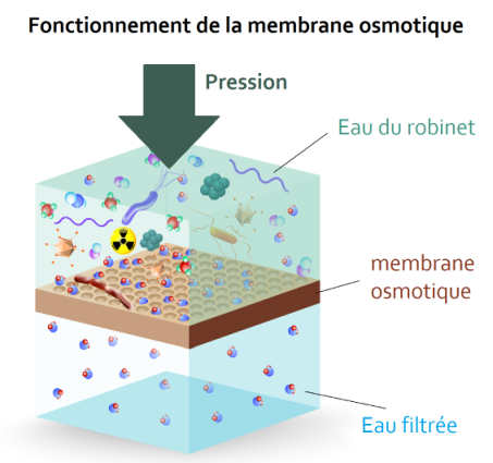 membrane osmotique